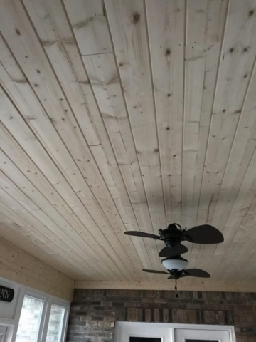 Ceiling With Fan